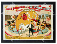 Historic Adam Forepaugh & Sells Brothers Circus Poster Advertising Postcard