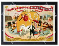 Historic Adam Forepaugh & Sells Brothers Circus Poster Advertising Postcard