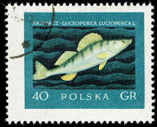 Scott # 810 - 1958 - ' Giant Pike Perch ', Fishes