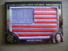2018 Benchwarmer Hot For Teacher Brandy Grace Super Flag Patch Ser# 1/1