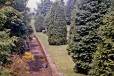 PHOTO  DUMFRIESSHIRE  REMAINS OF CANONBIE RAILWAY STATION 1986 VIEW NORTHWARD TO