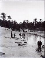 MAGHREB Maroc Algérie Tunisie Oued c1900, NEGATIF Photo Plaque Verre vR9