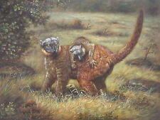 """Playful Marcupials"" Original Hand Painted 20""x24"" Oil Painting Animal Art"