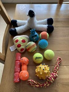 Selection of 12 all sort of dog toys for medium dog.