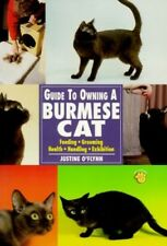 Very Good, Guide to Owning a Burmese Cat, Justine O'Flynn, Book