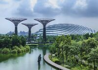A1 Gardens by the Bay Singapore Poster Art Print 60 x 90cm 180gsm - Gift #13040