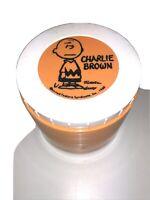 Vintage Orange 1960's Charlie Brown Thermos Insulated Jar #1155