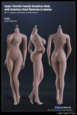1/6 TBLeague Female Seamless Body Suntan Large Bust S06B w/Steel Skeleton Phicen