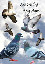 Personalised Racing Homing Pigeon Birthday Card - Any Name/Greeting/Occasion