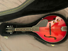 More details for delta blue electro mandolin with case