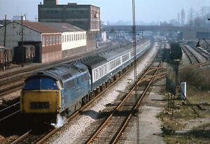Railway Slide  BR Class 52 D1025 WESTERN GUARDSMAN  Slough 1975 . 12.30 PAD-PAIG