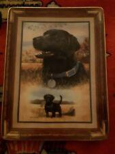 Franklin Mint Heirloom Best Of Breed Labrador Dog Rectangular Decorative Plate