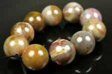 Petrified Agatized Wood Agate Round Bead - 12mm - 10 Pieces - 2488A