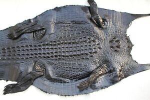 Genuine Crocodile, Alligator Skin Leather Hide Exotic Pelt Black taxidermy Craft