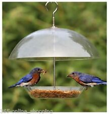 Clear Covered Dome Canopy Bird Seed Feeder For Small Birds - Keeps Big Birds Out