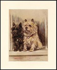 CAIRN TERRIER DOGS AT A WINDOW LOVELY MOUNTED DOG ART PRINT READY TO FRAME