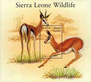 MODERN GEMS - Sierra Leone - Wildlife Deer - Souvenir Sheet - MNH