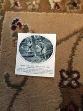 75-6 ephemera 1917 picture ww1 women timber girls ludlow dorothy cooke