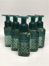 x5 Bath & Body Works Vanilla Sage Foaming Hand Soap
