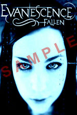 AMY LEE 12x18 EVANESCENCE BAND POSTER FALLEN SYNTHESIS BEN MOODY THE OPEN DOOR 9