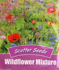 SCATTER SEEDS WILDFLOWER MIXTURE QUICK & EASY TO SOW 175 QUALITY FLOWER SEEDS