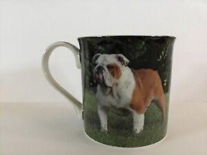New boxed bulldog dog pet gift fine china mug coffee cup Free P+P