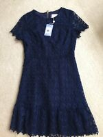 Sail to Sable Women's Navy Blue Lace A-Line Dress Sz 4 NWT $228