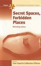 Secret Spaces, Forbidden Places: Rethinking Culture (Polygons)  Hardcover