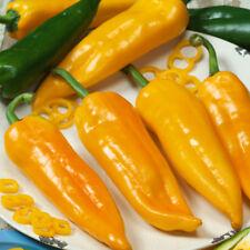 Pepper Sweet - Long Yellow Ringo - 50 Seeds