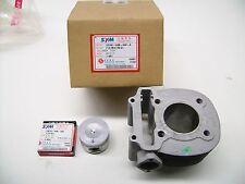Neuf Original SYM cylindres avec pistons pour RS 125 - OEM 12100-h6b-000-a