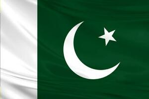 Pakistan Flag 5x3/150x90cm Large Polyester Asia Cricket World Cup National