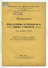 Originale antiquarische Bücher mit Broschüren-Einband als Erstausgabe