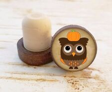 Owl with Pumpkin Wine Stopper, Bottle Stopper, Dark Wood Cork Bottle Stopper