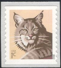 USA 2012 Bobcat/Chats/FAUNE/ANIMAUX/NATURE/conservation 1 V S/A ex Bobine n44588a