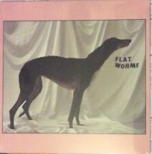 FLAT WORMS - SELF TITLED DEBUT VINYL LP  NEW MINT SEALED OH SEES TY SEGALL