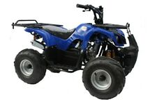 Condor Blue 125cc Quad Bike 4 Stroke Electric Start with Reverse