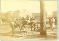 Egypte, Le Caire, attelage et cocher  Vintage albumen print. Cairo  Tirage alb