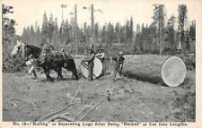 Separating Logs, McCloud River Lumber Co. Logging ca 1910s Vintage Postcard