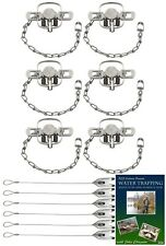 (6 Pack) Duke #1 Coilspring Value Package with Dvd and Cable Stakes