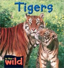 Tigers (In the Wild)