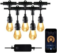 Outdoor Dimmable Patio Light LED Lights Smart String Light - 48ft, 24 Round Bulb