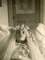 Antique Post Mortem Child Casket Photo 218 Oddleys Strange & Bizarre
