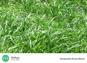 McKays Temperate Pasture Blend - 5kg - Lawn Seed Free Postage