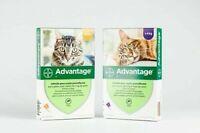 ADVOCATE Bayer Per Gatti fino 4kg antiparassitario antipulci pulci