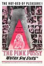 Pink Pussy Poster 01 A3 Box Canvas Print