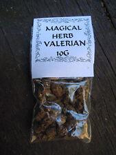 Valeriana Erba Wicca Pagan INCANTESIMO forniture erbe incenso Stregoneria