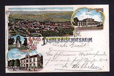 115757 AK Tauberbischofsheim 1905 Litho Bahnhof Hotel Restaurant Goldner Adler