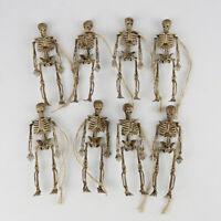 KE_ AU_ BL_ 8Pcs Lifelike Horrible Simulation Skeleton Ornament Halloween Part