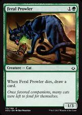 MTG Magic - (C) Hour of Devastation - Feral Prowler FOIL - NM/M