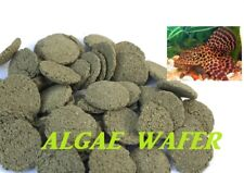 1KG ALGAE WAFER 6% SPIRULINA TOP QUALITY TROPICAL FISH FOOD FEED PLECO,FREE P+P